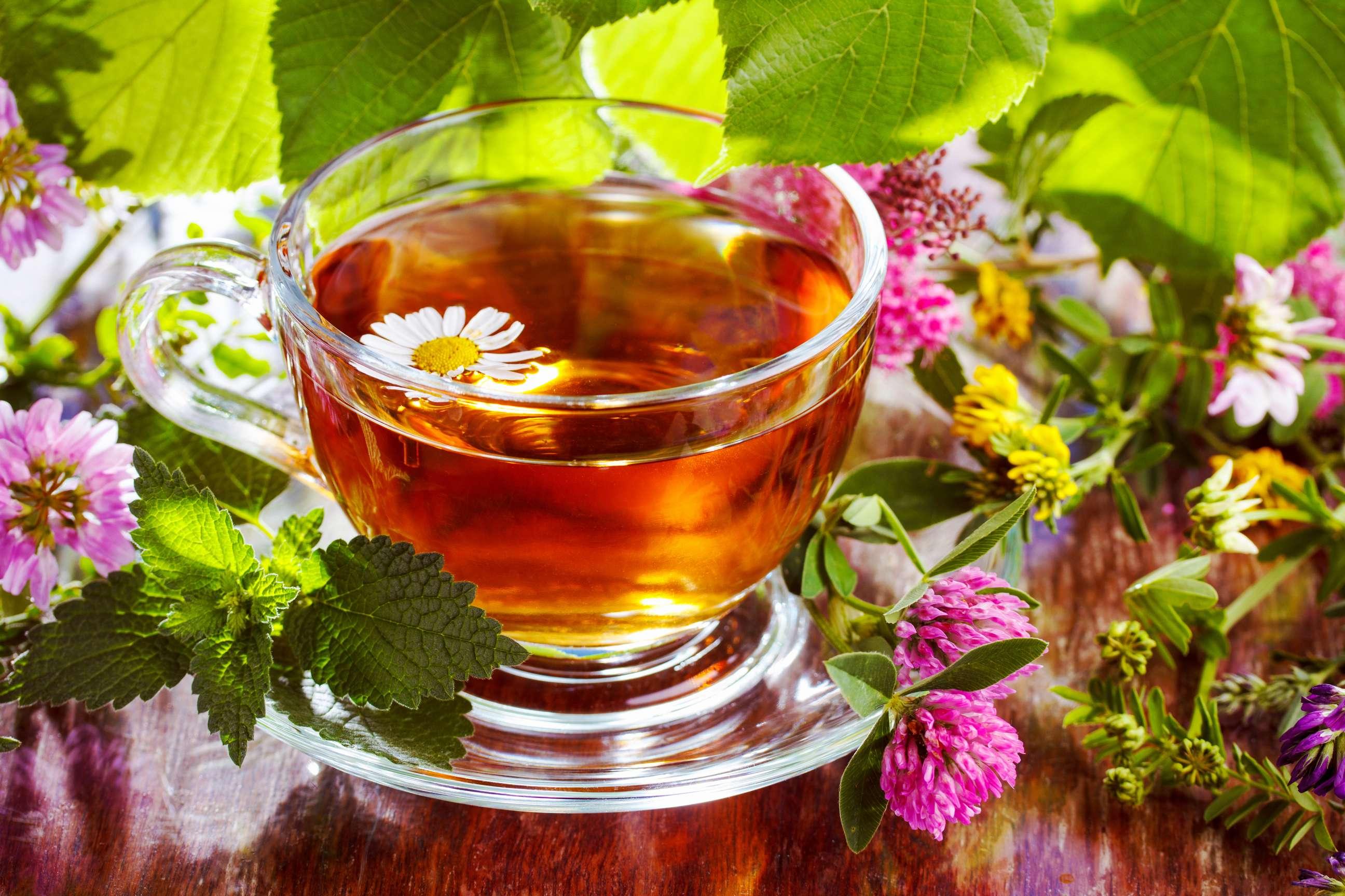 bitki çaylarının faydası, bitki çayları, bitki çayı
