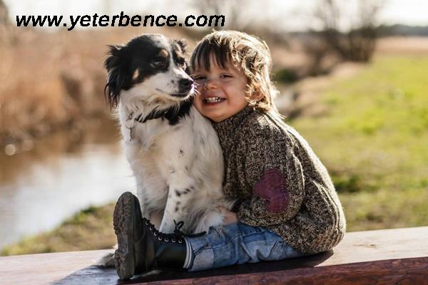 hayvan sevgisi sayesinde çocuk gelişimi, çocuk gelişiminde hayvan sevgisi, çocukların gelişiminde hayvanların katkısı