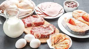 helal gıda belgesi, helal gıda sertifikası, helal gıda belgelendirmesi yapımı